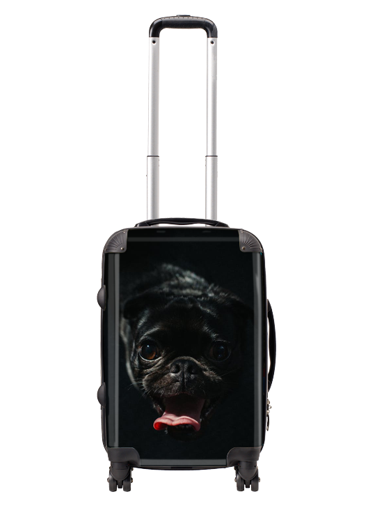 Picture of Personalized Cabin Carry-on Suitcase